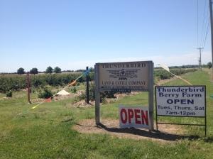 Thunderbird Berry Farm 71st & 321 East Ave in Broken Arrow 7515 South Hansen Road