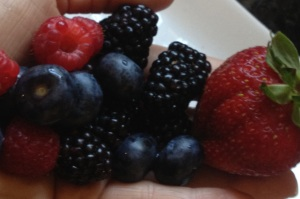 A handful of hand picked berries